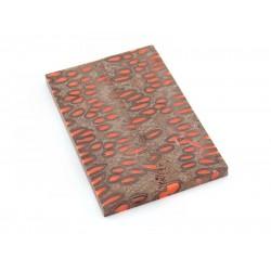 Banksia Pod Scales - Safety Orange (WS2-SSO)