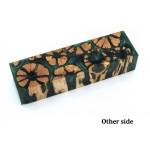 Cholla Cactus Rounds -  Block - Green (WS3-BRGR)